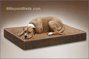 Natural Latex Dog Beds Large Latex Dog Beds Made In Usa