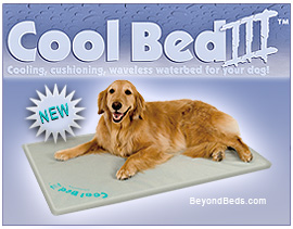 Dog Beds And Mats Speciality Dog Beds