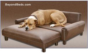 Max Comfort® Modern Pet Sofa with Optional Ottoman