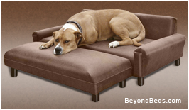 Cool Dog Beds And Mats Speciality Dog Beds Gmtry Best Dining Table And Chair Ideas Images Gmtryco